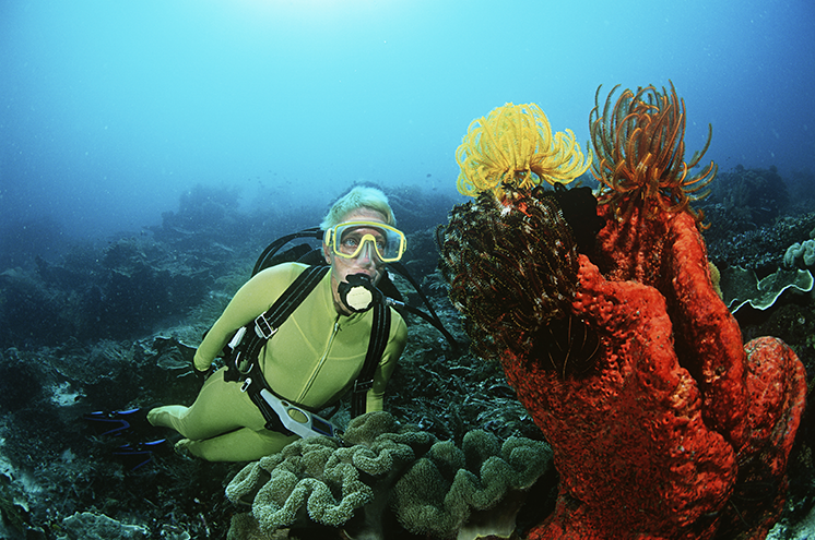 scuba header - Why Scuba Diving is a Good Activity to Add to Your Travels