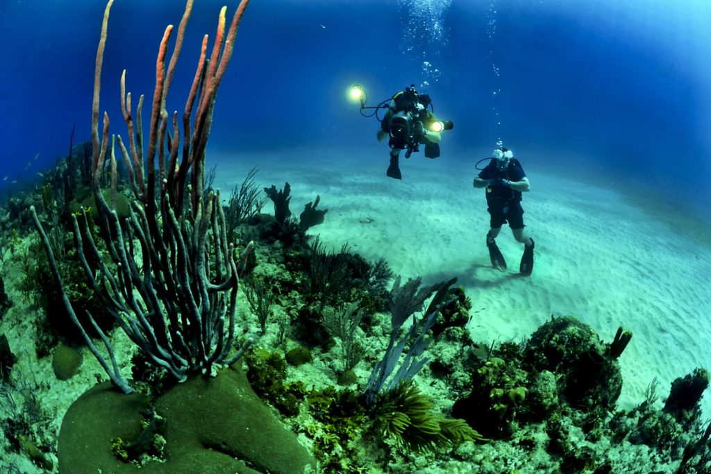Divers 1024x683 - Why Scuba Diving is a Good Activity to Add to Your Travels